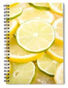 Lemons And Limes Abstract Spiral Notebook