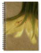 Lempa Spiral Notebook