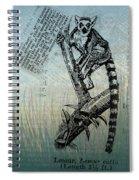 Lemur Catta Spiral Notebook