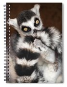 Lemur Spiral Notebook