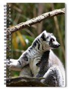 Lemur Love Spiral Notebook