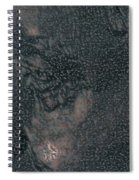 Lenore As Bronze 2 Spiral Notebook