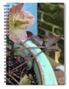 Lenten Rose After An April Shower Spiral Notebook