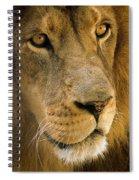 Leo The Lion Spiral Notebook