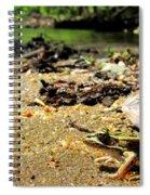 Leopard Frog Landing Spiral Notebook