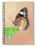 Leopard Lacewing Butterfly #2 V2 Spiral Notebook
