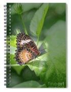 Leopard Lacewing Spiral Notebook