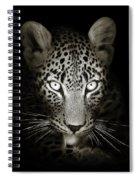 Leopard Portrait In The Dark Spiral Notebook