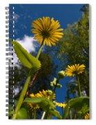 Leopard's Bane 8 Spiral Notebook