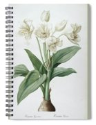 Les Liliacees Spiral Notebook