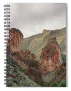 Leslie Gulch Spiral Notebook