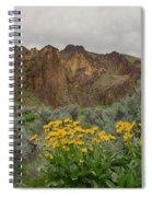 Leslie Gulch Sunflowers Spiral Notebook