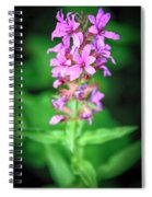 Lesser Purple Fringed Orchid Spiral Notebook