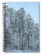 Let It Snow 3 Spiral Notebook