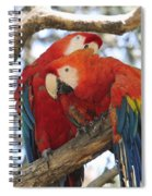 Let Me Get It - Scarlet Macaws Spiral Notebook