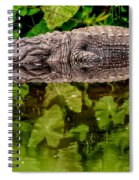 Let Sleeping Gators Lie Spiral Notebook