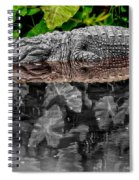 Let Sleeping Gators Lie - Mod Spiral Notebook