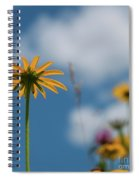 Let The Sunshine In... Spiral Notebook