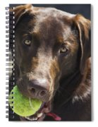 Lets Play Ball Spiral Notebook