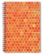 Let's Polka Dot Spiral Notebook