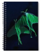 Let's Swim To The Moon Spiral Notebook
