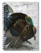 Lets Talk Turkey  Spiral Notebook