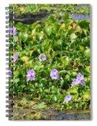 Lettuce Lake Flowers Spiral Notebook