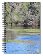 Lettuce Lake With Bridge Spiral Notebook