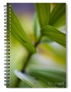 Levels Spiral Notebook
