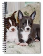 Lexi And Gracie Spiral Notebook