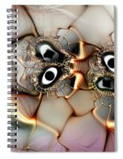 Lexicon Of The Visionary Spiral Notebook
