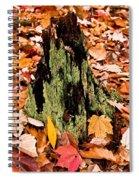 Lichen Castle In Autumn Leaves Spiral Notebook