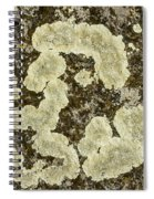 Lichen Design Spiral Notebook