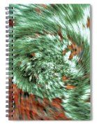Lichen On Granite Spiral Notebook