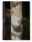 Lichen On The Trees At The Coba Ruins  Spiral Notebook