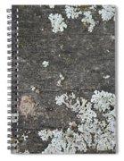 Lichen On Wood Spiral Notebook