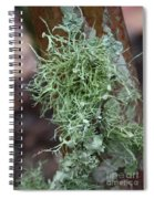 Lichens 6 Spiral Notebook