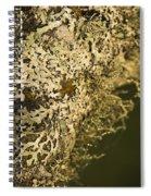 Lichens In Oregon Spiral Notebook
