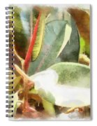 Life Anew Spiral Notebook