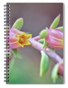 Life Delights In Life Spiral Notebook
