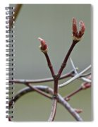 Life Endures Spiral Notebook