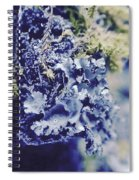 Life In The Cloud Forest Spiral Notebook