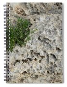 Life On Bare Rock - Pockmarked Limestone And Thyme Spiral Notebook