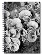Life On The Rocks In Black And White Spiral Notebook
