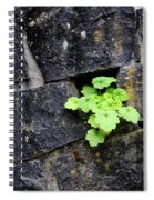 Life Will Find A Way Spiral Notebook