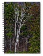 Life's A Birch No.1 Spiral Notebook