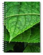 Lifes A Journey Spiral Notebook