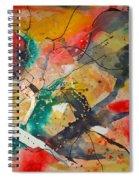 Lifes Little Cracks Spiral Notebook
