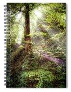 Light Along The Trail Spiral Notebook