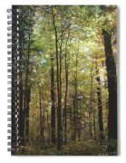 Light Among The Trees Vertical Spiral Notebook